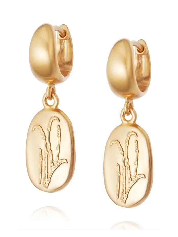 daisy jewellery earrings